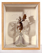 Orchid Reliquary #1